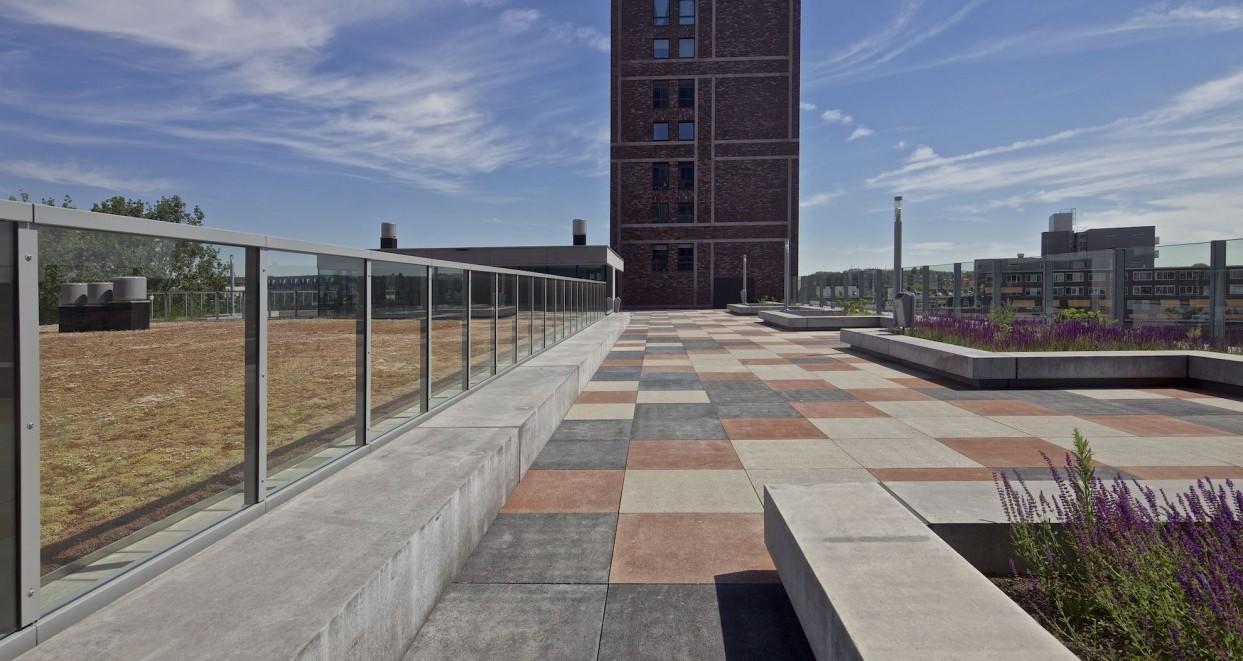 Dakterras hogeschool Rotterdam (2)