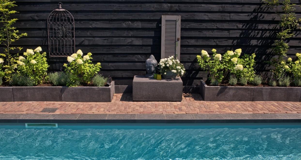 Tuin met zwembad (2)