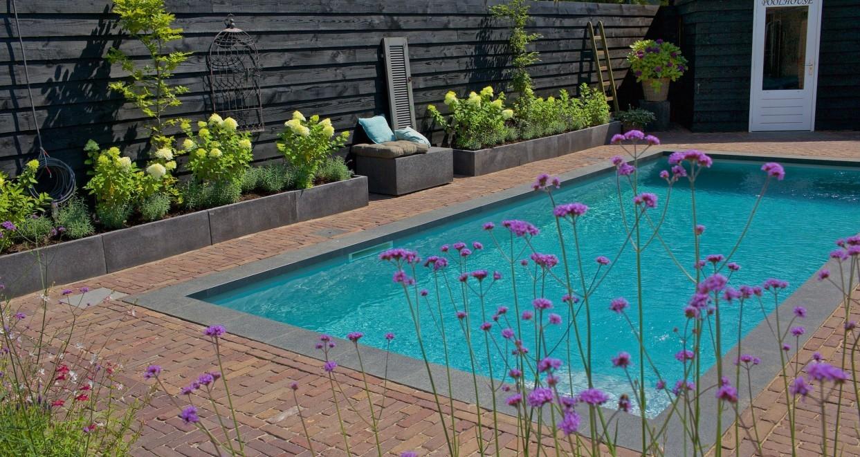 Tuin met zwembad (3)